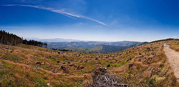 Pomiędzy Skrzycznem a Małym Skrzycznem - panorama na Magurę Radziechowską