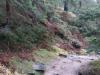 Zejście do Doliny Białej Wisełki