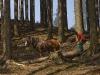 Dzień 1 - Zrywka drewna