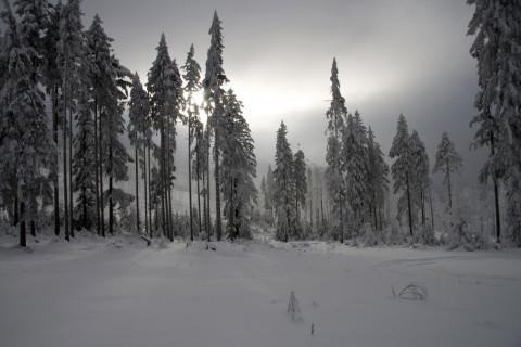 Przebija się słońce - Hala Kupczatkowa