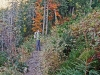 Zejście zielonym szlakiem