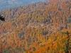 Jesień w Żabnicy