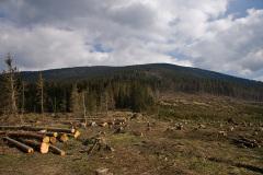 Rysianka - Romanka 13 IV 2008