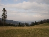 Na Hali Boraczej - widok w stronę Rajczy