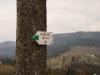 Hala Boracza w tle - rozgałęzienie szlaków zielonego i czarnego