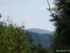 Widok na Chatkę Puchatka z miejsca gdzie mieszkaliśmy