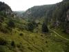 Dolinka Kobylańska - widok w stronę Będkowic