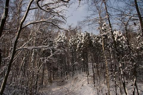 Wzgórze Hugona